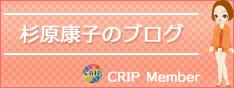 杉原康子のブログ