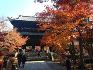 Kyoto's Colors: The Autumn Tints