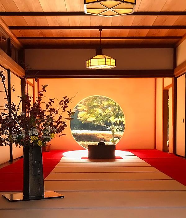 鎌倉で出会った美しいイエローベース