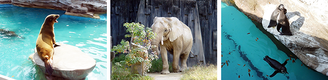 秋の東山動植物園